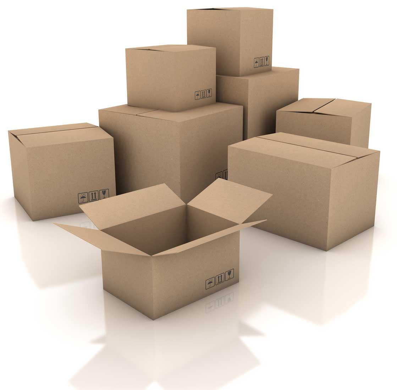 Carton_Box_4